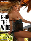 Gain the Wind