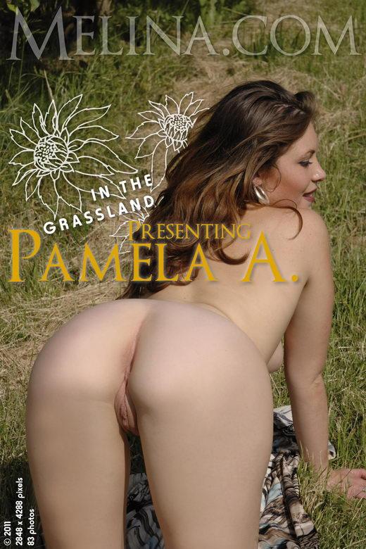 Pamela A - `In the Grassland` - for MELINA
