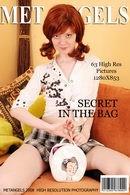 Secret in the Bag