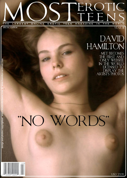 `No Words` - by David Hamilton for METART ARCHIVES