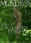 - The Enchanted Forest 01