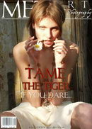 Tame The Tiger 01