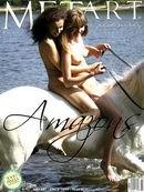 - Amazons 2