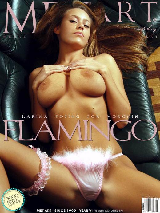 Karina B - `Flamingo` - by Voronin for METART