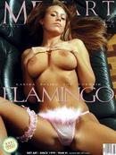 Karina B - Flamingo