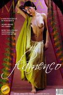 Adele D - Flamenco