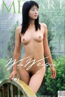 Wu Weiqui