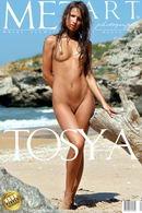 Presenting Tosya