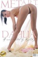 Presenting Dahlia