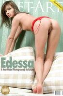 Presenting Edessa