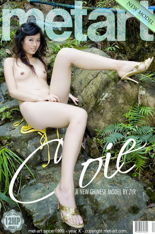 Coie Cheung in Presenting Coie gallery from METART by Zyr
