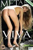 Viva B - Presenting Viva