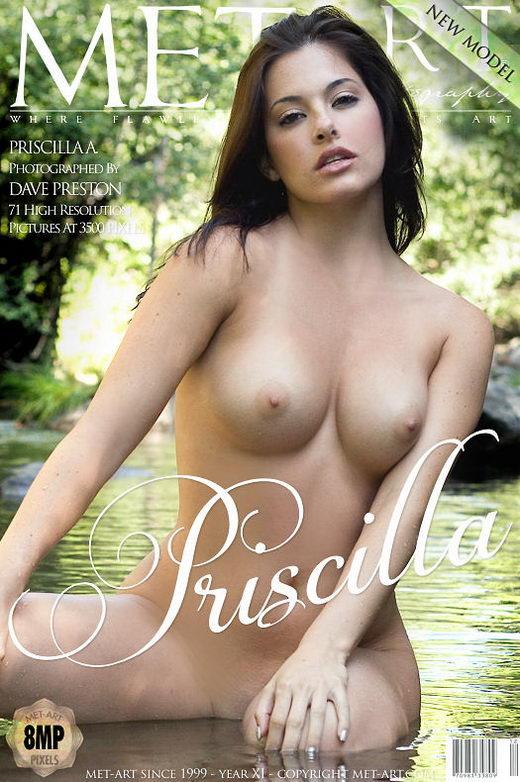 Priscilla A - `Presenting Priscilla` - by Dave Preston for METART