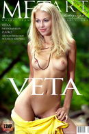 Presenting Veta