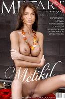 Metikil