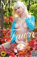 Lilu C - Fawn