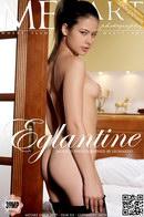 Jackie D - Eglantine