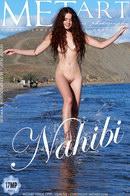 Nahibi
