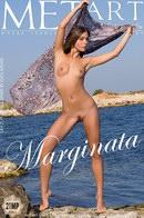 Lily C - Marginata