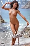 Divina A - Halcone