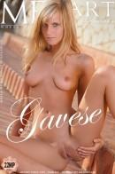 Miela A - Gavese