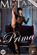 Prima - Presenting Prima