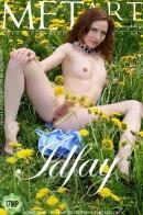 Idfay