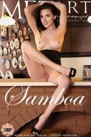 Niemira - Samboa