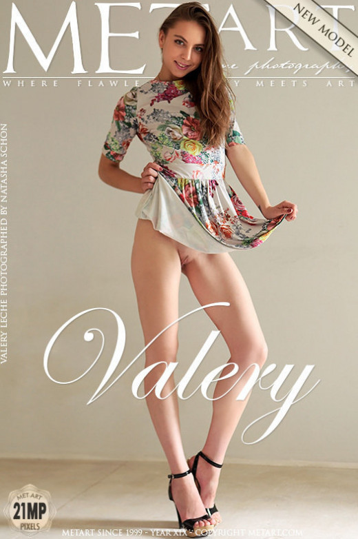 Presenting Valery Leche gallery from METART by Natasha Schon
