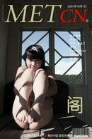 Zhang Xiaoyu - Attic