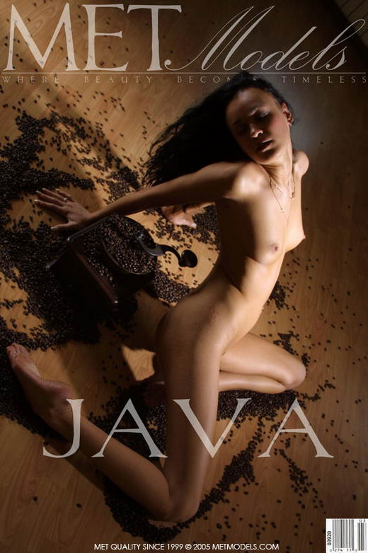 Rhoda in Java gallery from METMODELS by Alexander Fedorov