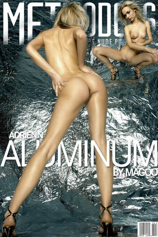 Adrienn - `Aluminum` - by Magoo for METMODELS