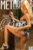 Mima - Pine