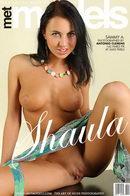 Shaula