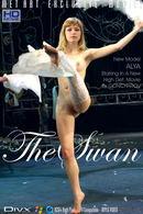 Alya - The Swan