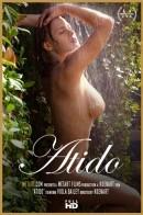 Viola Bailey - Atido