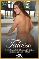 Zelda B - Talasso