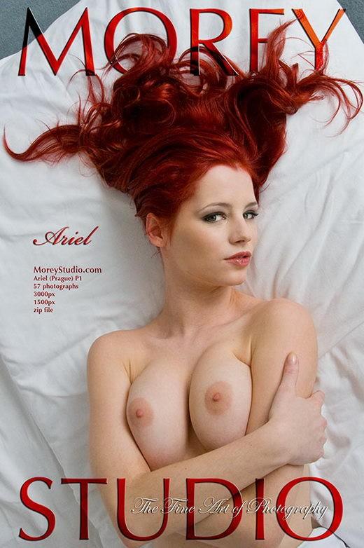 Ariel - `P1` - by Craig Morey for MOREYSTUDIOS