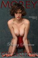 Playboy TV/Sexcetera C1