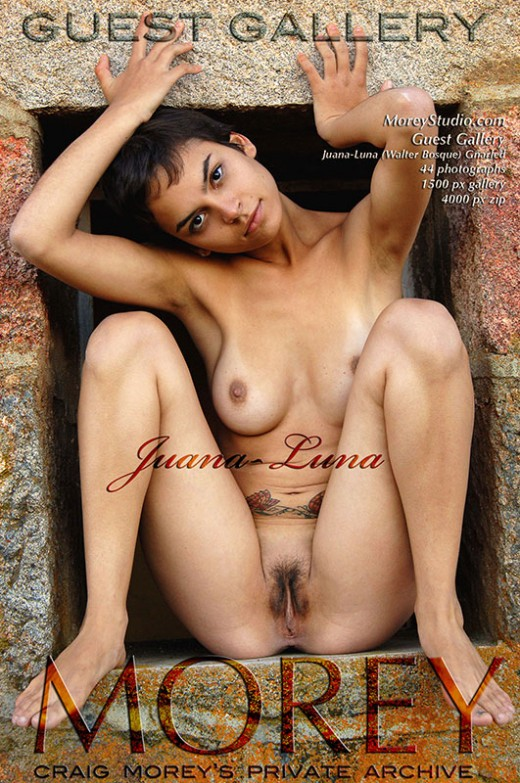 Juana-Luna - `Guest Gallery (Walter Bosque) - Gnarled` - by Walter Bosque for MOREYSTUDIOS2