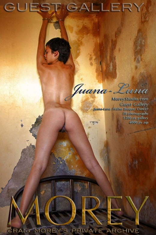 Juana-Luna - `Guest Gallery (Walter Bosque) - Convict` - by Walter Bosque for MOREYSTUDIOS2