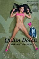 Quinn Dolan - Pink Pussy #1