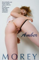 Amber C11a gallery from MOREYSTUDIOS2 by Craig Morey