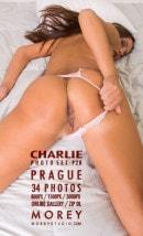 Charlie P2b