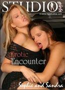 Erotic Encounter