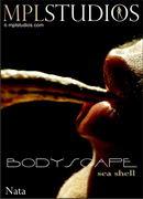 Bodyscape: Seashell