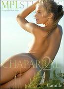 Chaparral 2