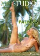 Coconut Palms 2