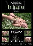 Polination 2