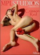 Alisa - Crimson Red